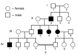 Understanding Pedigrees: Grade 9 Genetics for IGCSE